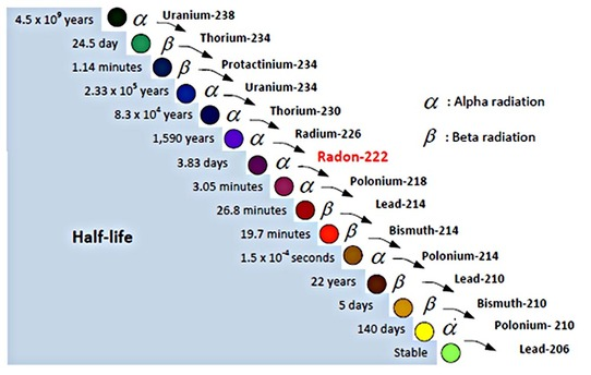 does radioactive dating with isotopes of uranium As uranium-238 decays into lead-206, it will sometimes decay into a different isotope of its parent uranium isotope and sometimes it will decay into an isotope of a totally different element than its parent this series of alpha and beta decays is known as the uranium-238 decay series.